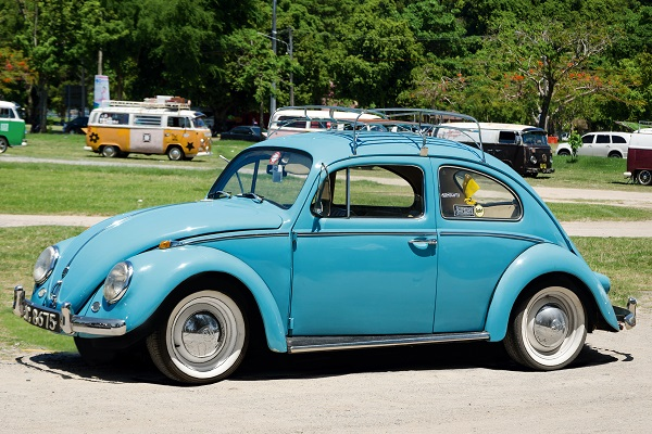 10252_Real-Beetle.jpg